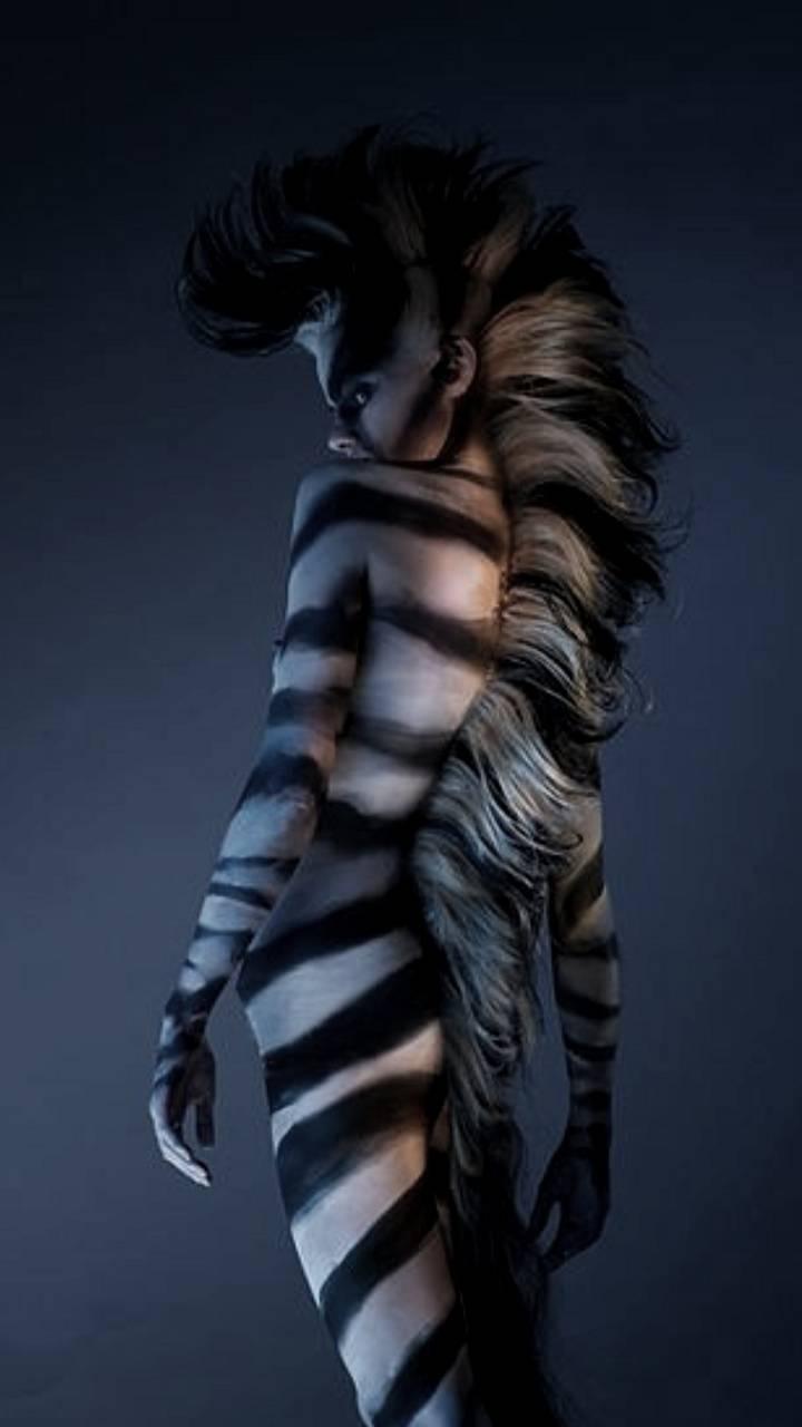 A Zebra Wallpaper By Georgekev 3e Free On Zedge