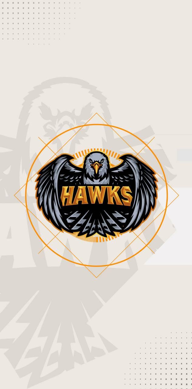 TeamHawks