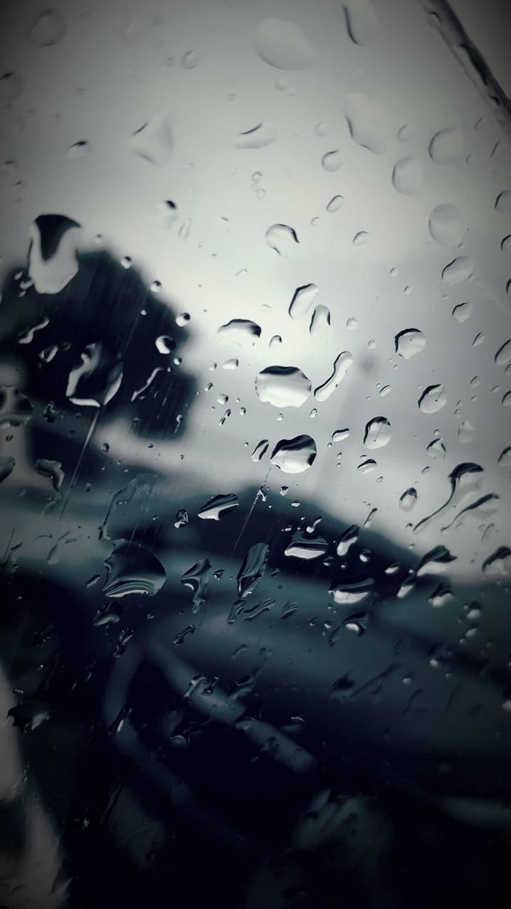 Shopping in the Rain
