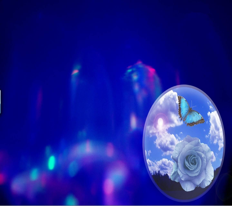 blue rose ball