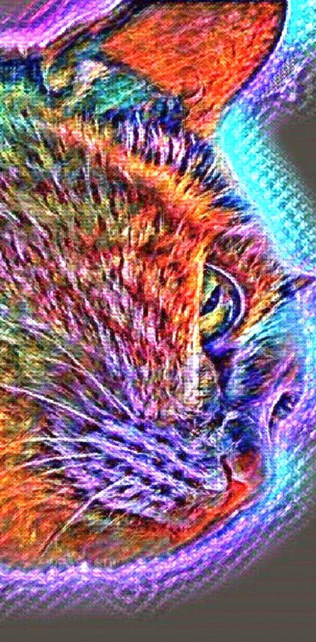 Glow Cat Face