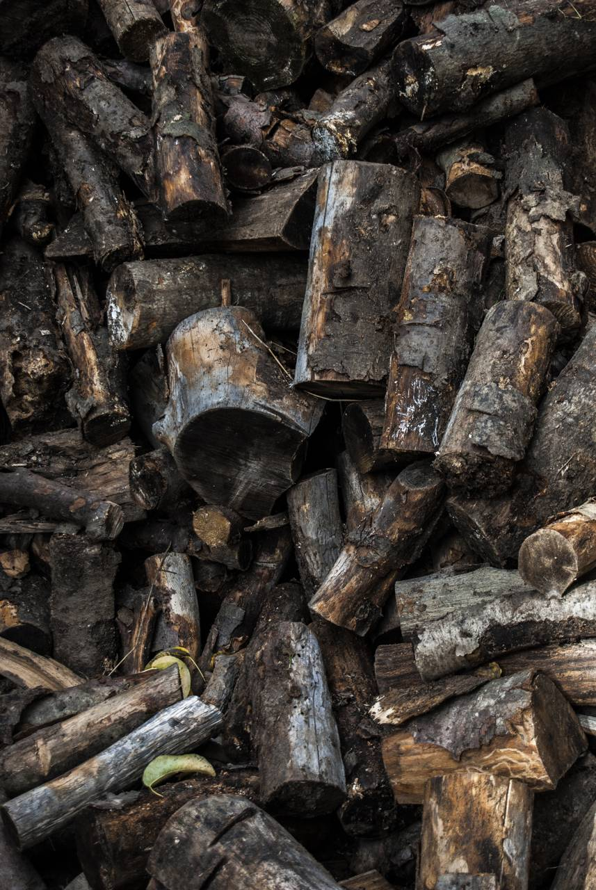 Wood heap