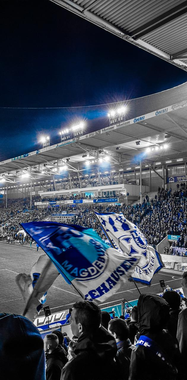1FCMagdeburg