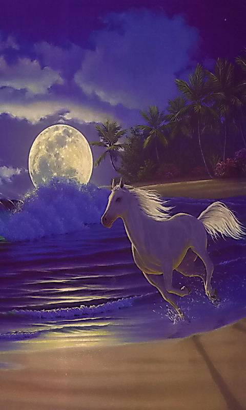 Tropical Dream Wallpaper By Griff1959 9d Free On Zedge