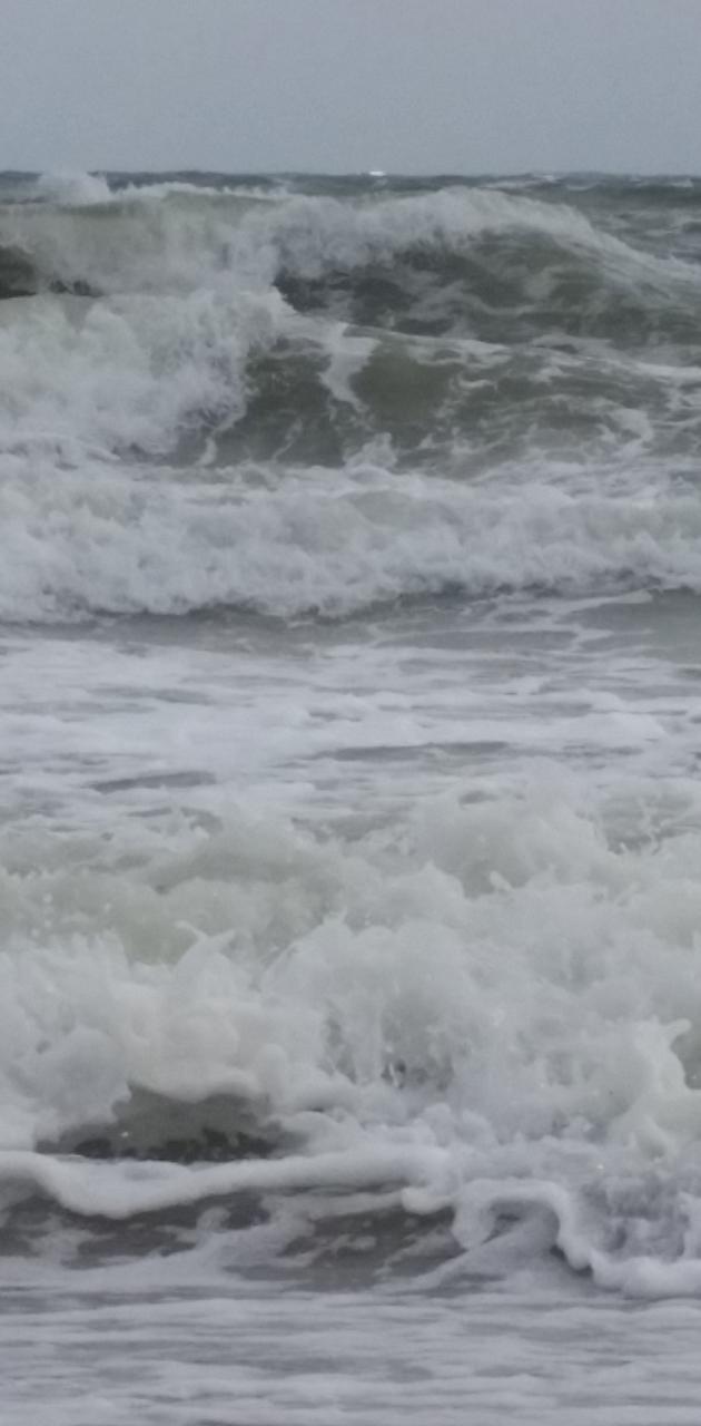 Black Sea Wave