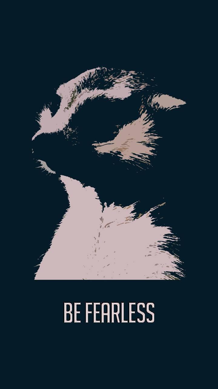 Be Fearless -Meerkat