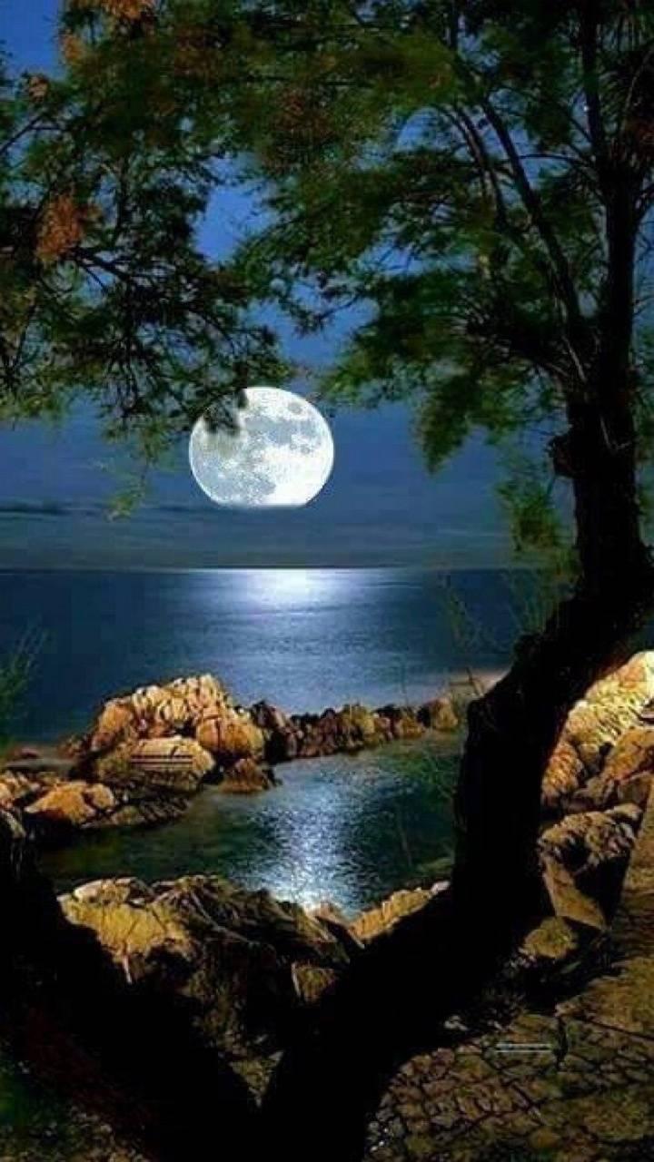 Night ar sea