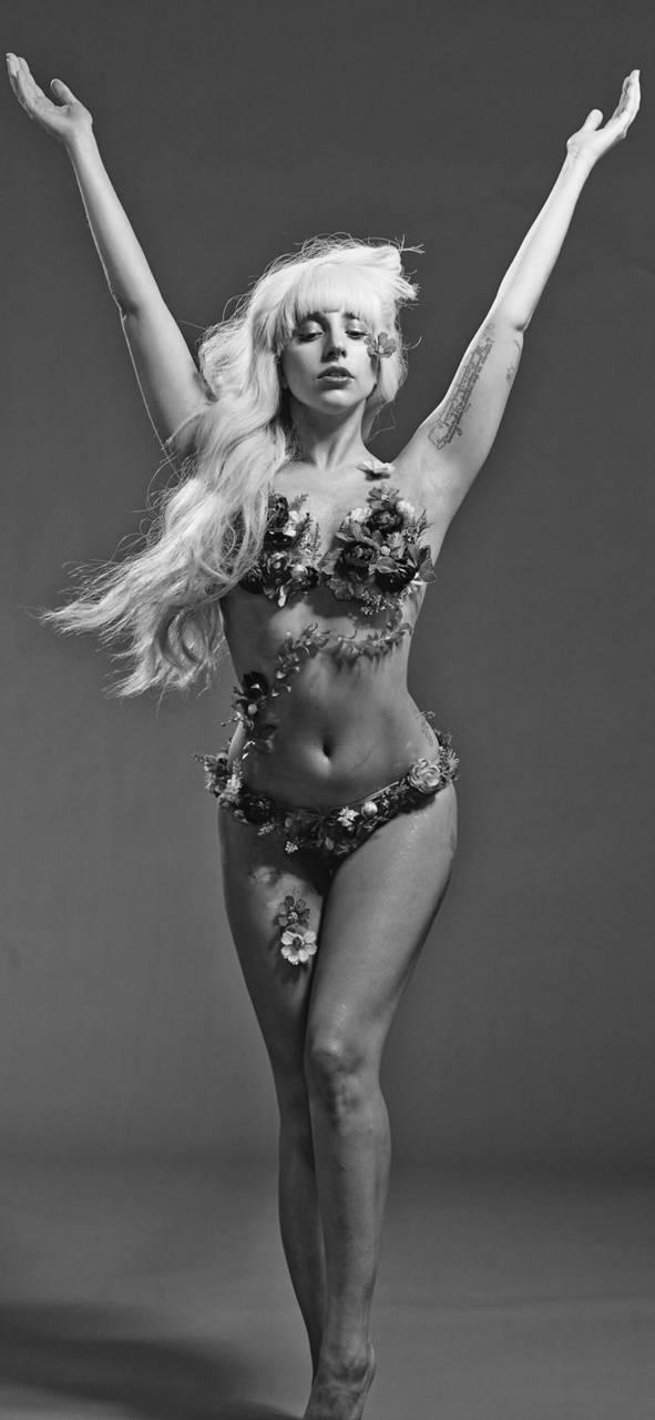Gaga venus