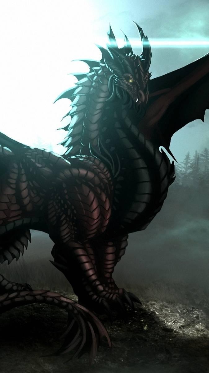 Dragon Of Black