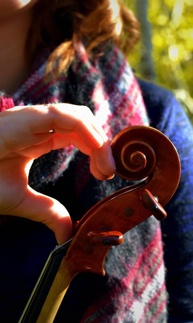 Violin Heart