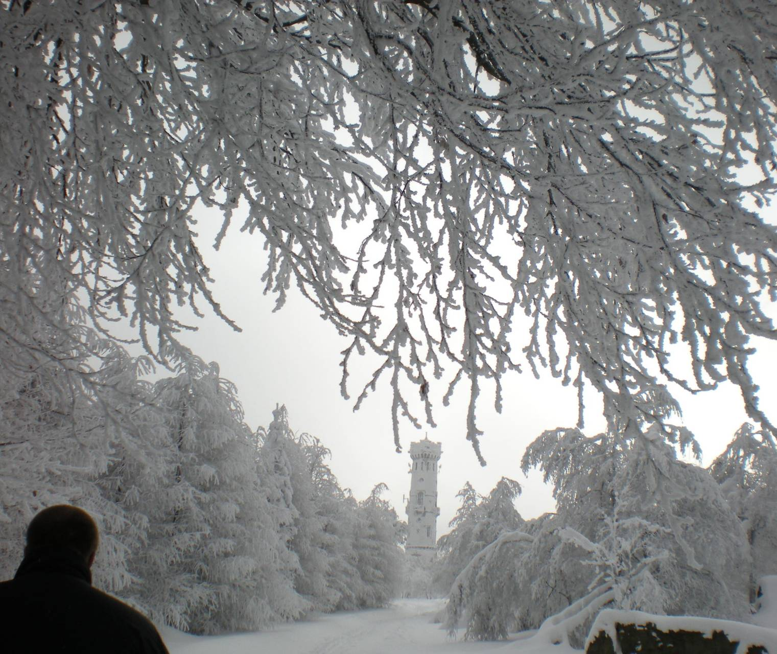 last winter walk