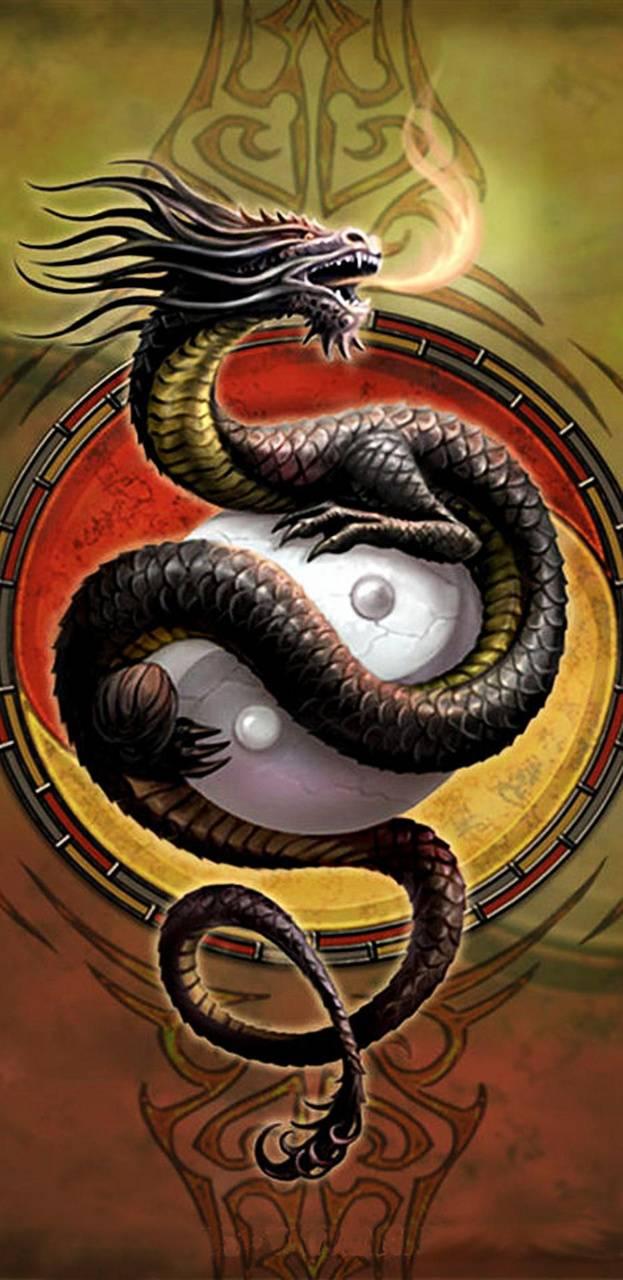 Ying Yang Dragon Wallpaper By Nikkifrohloff E6 Free On Zedge
