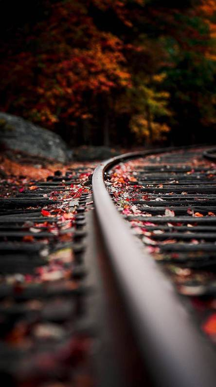 Railway track Wallpapers - Free by ZEDGE™