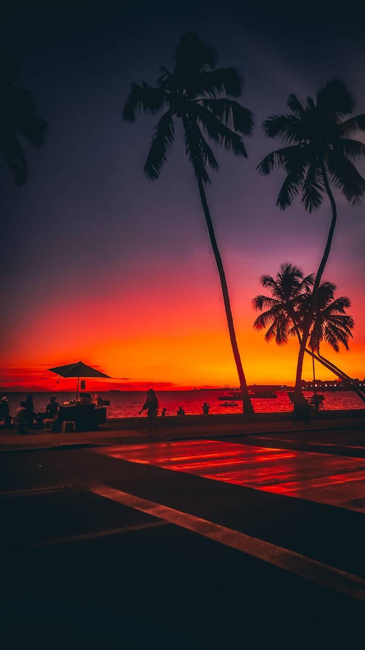 Sunset Urban
