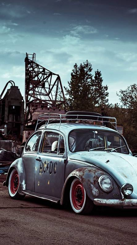 Beetle Wallpapers Free By Zedge
