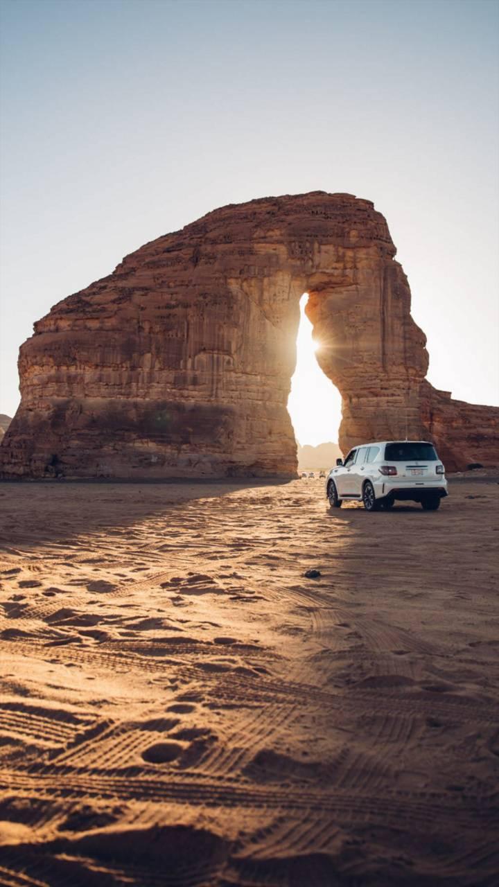 Desert Cruise