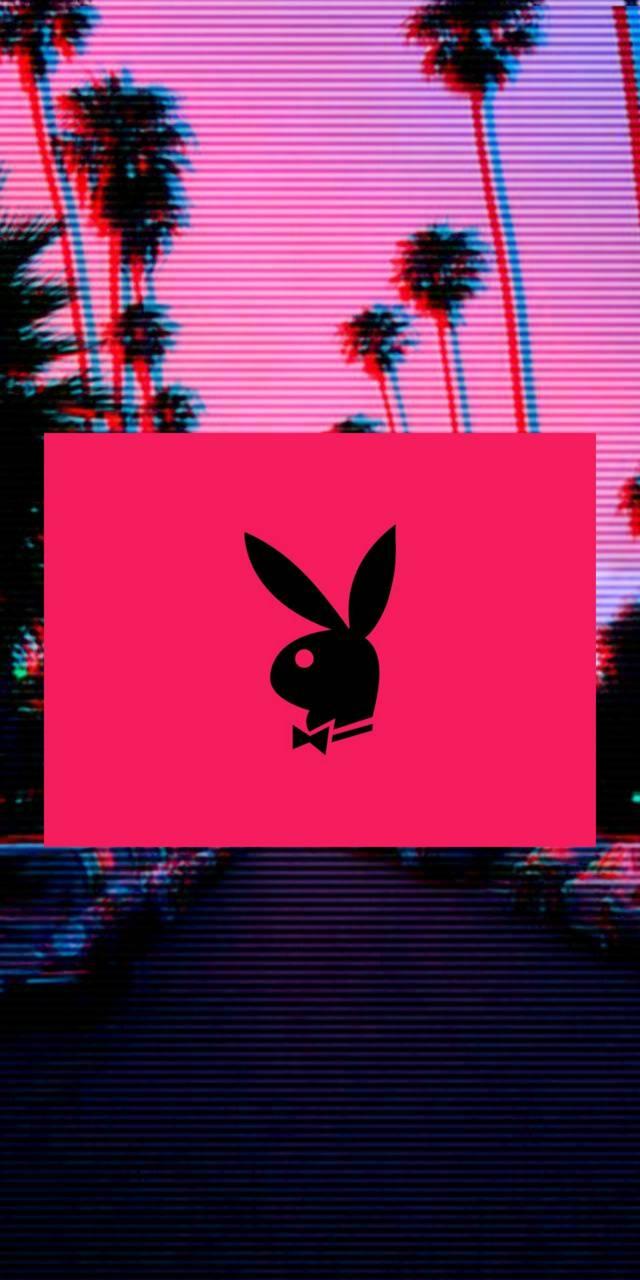 Playboy wallpaper by X6IXL1VES - df - Free on ZEDGE™