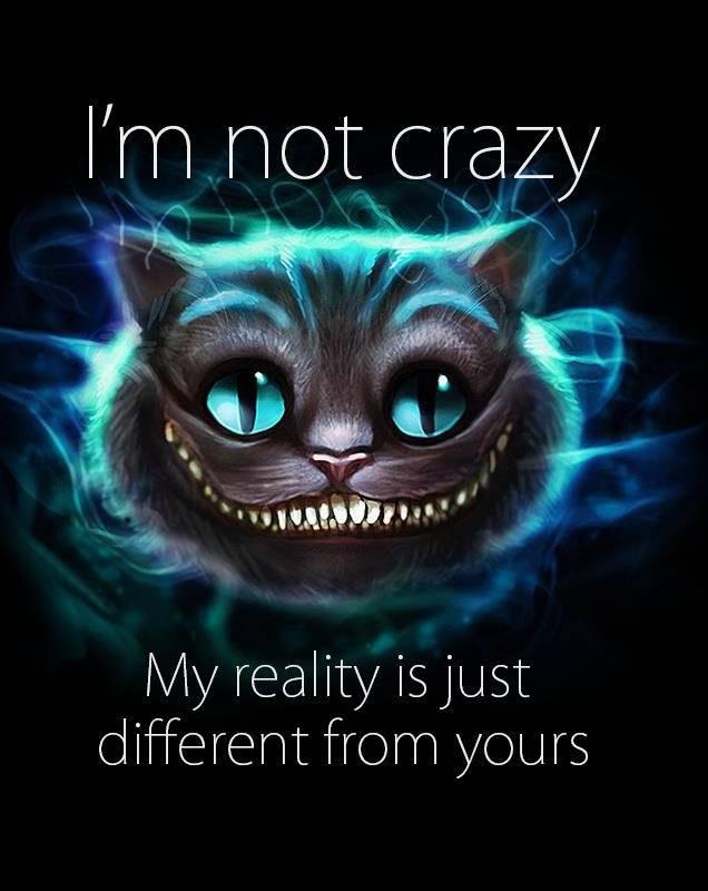 Cheshire Cat 1