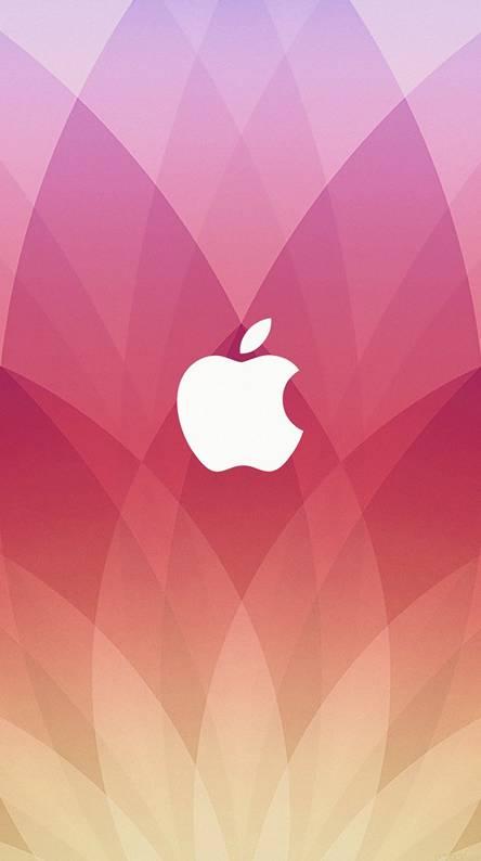 500 Wallpaper Apple Theme  Gratis