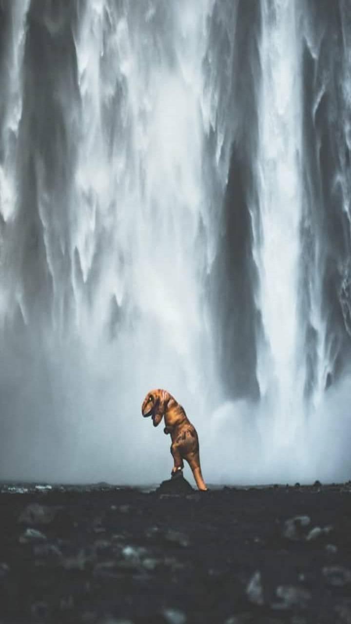 Waterfall Dinosaur