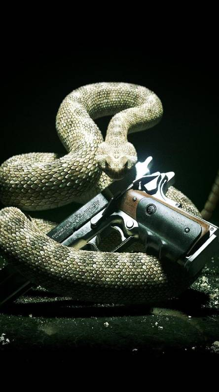 Hitman Snake