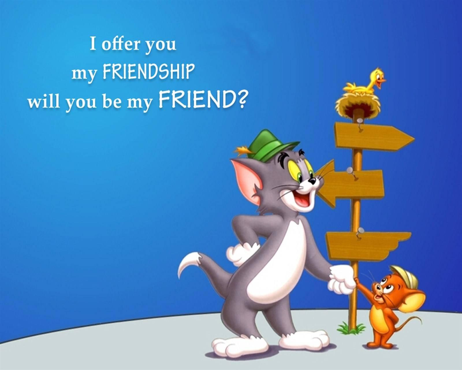 I Offer You