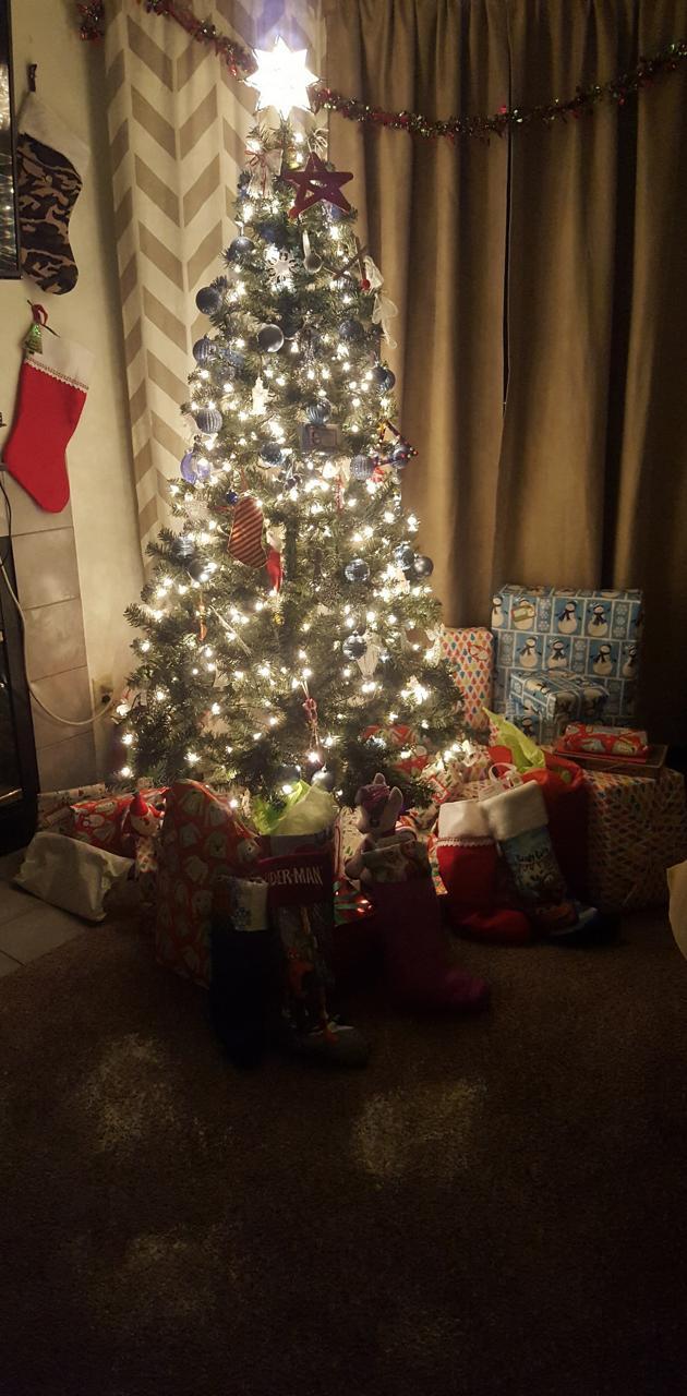Christmas tree cali