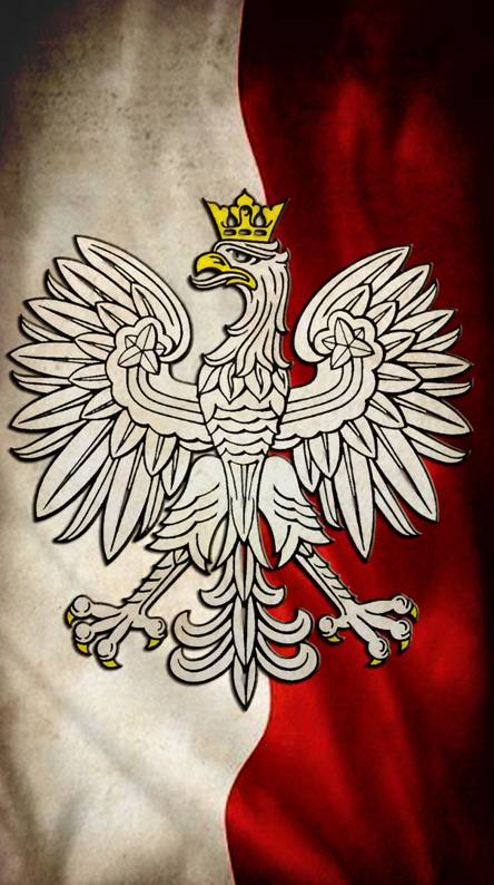 Polska Flaga i Godlo