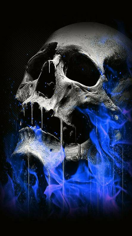 Flame skull Wallpapers - Free by ZEDGE™