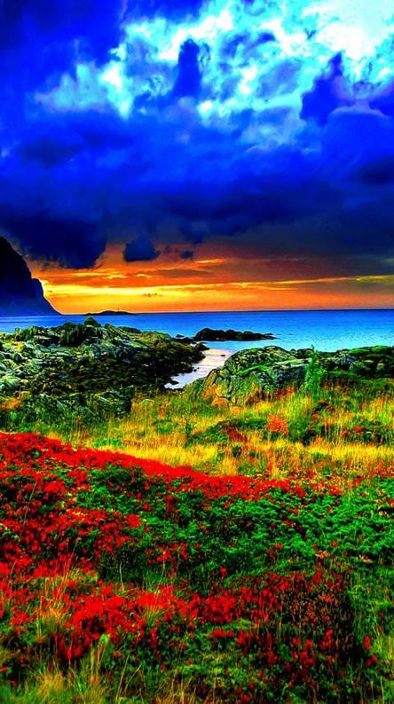 nature hd