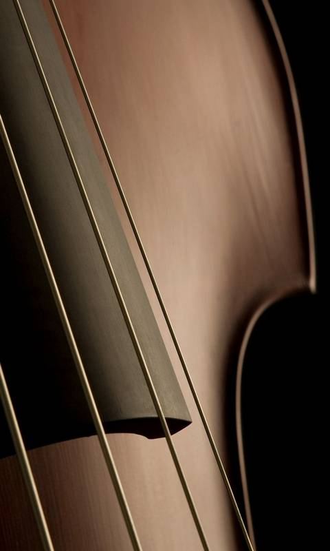 Cello Wallpaper by philvb - 6d - Free on ZEDGE™