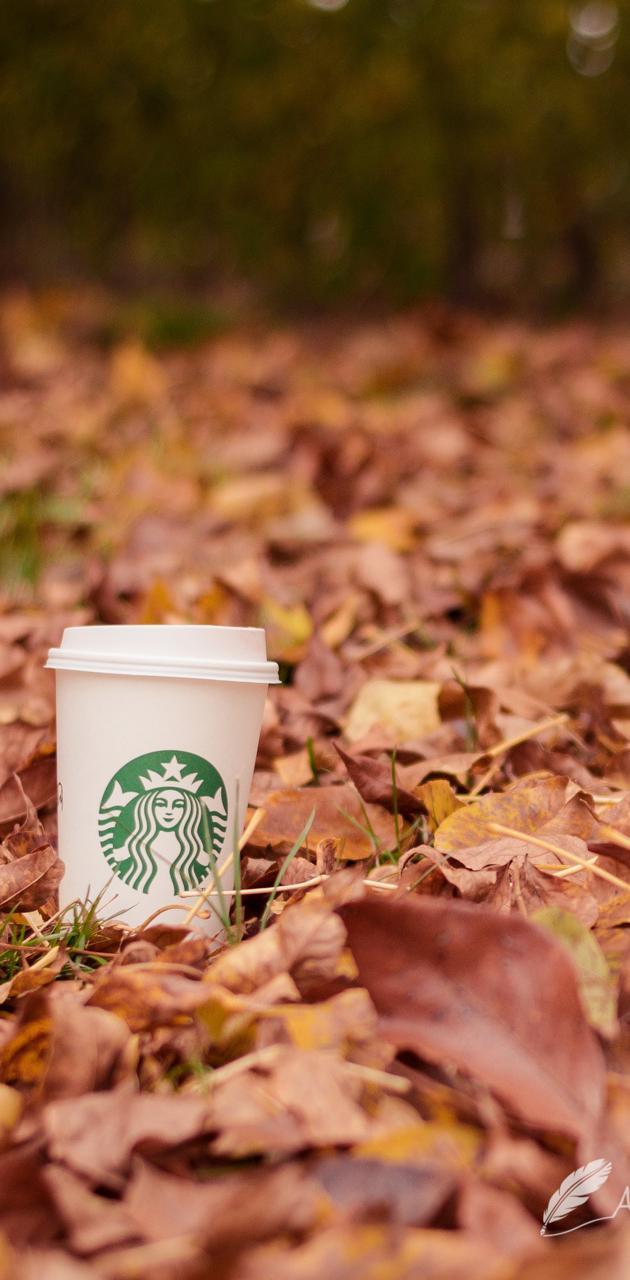 Starbucks Fall