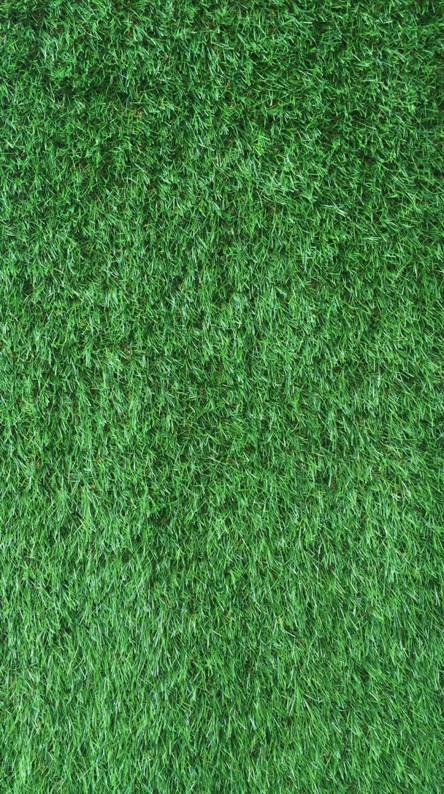grass of mine