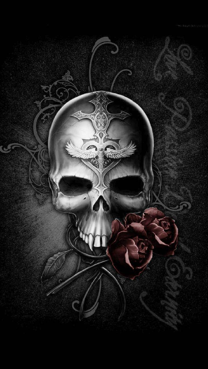 Skull With Rose Wallpaper By Alex0704 Df Free On Zedge