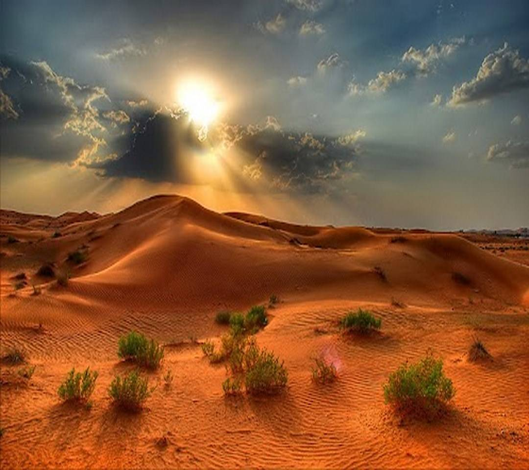 Beautiful Desert Wallpaper by _YOSEF_ - de - Free on ZEDGE™