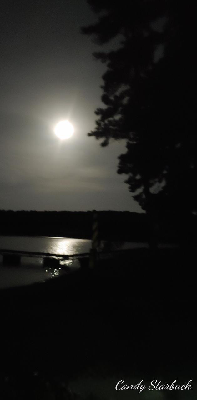 Moonlit Dock