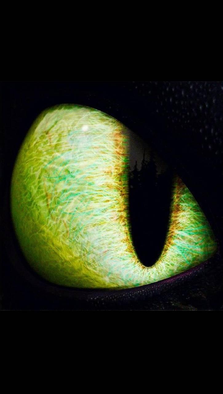 Eye dragon