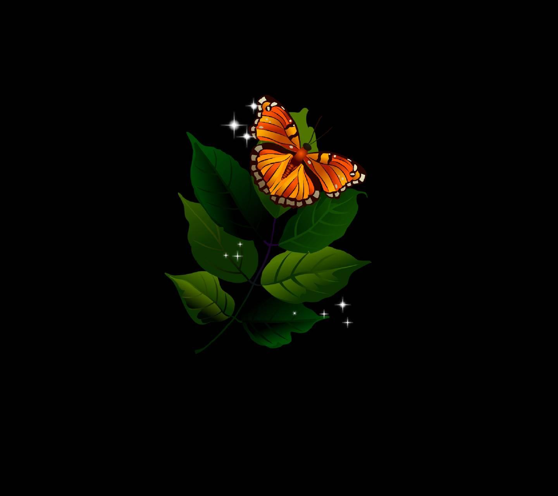 Sweet Butterfly 4