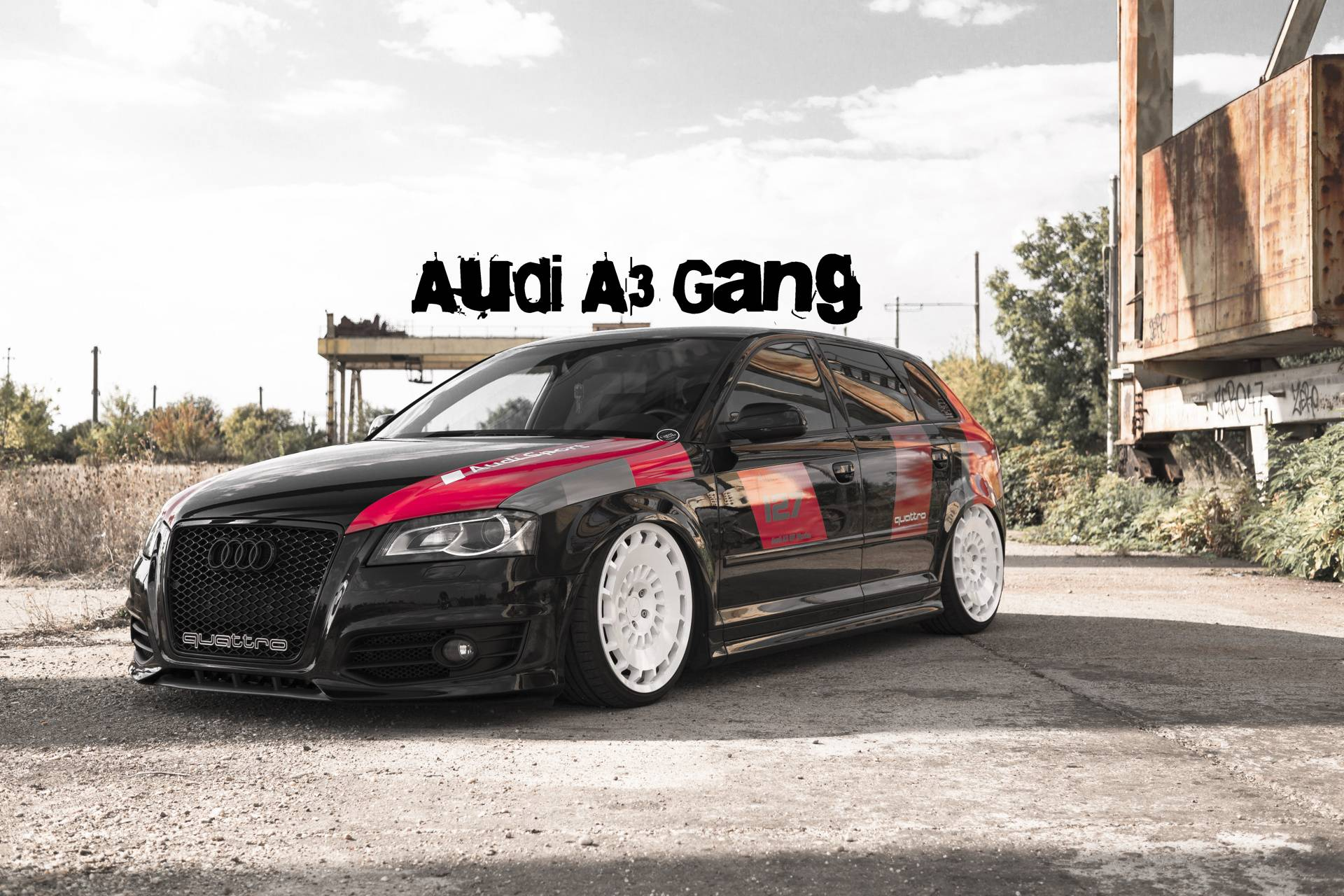 AUDI S3 GANG LOW