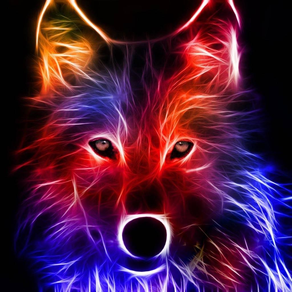 Neon Wolf Wallpaper By LuCkyman