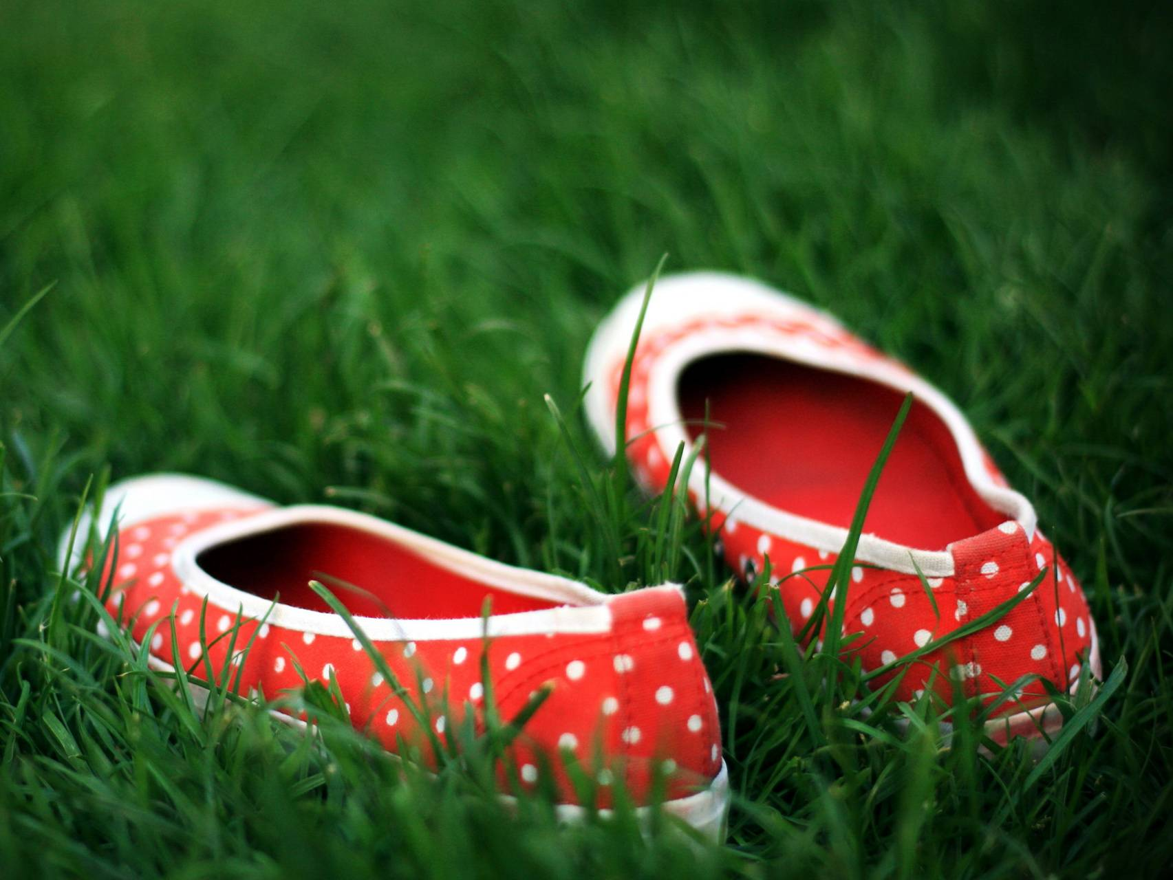 Shoes On Grass