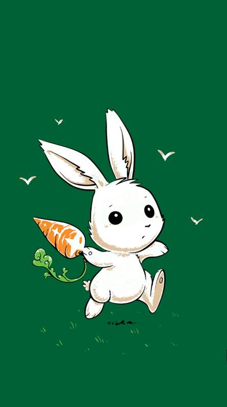 Rabbit Wallpapers Free By Zedge