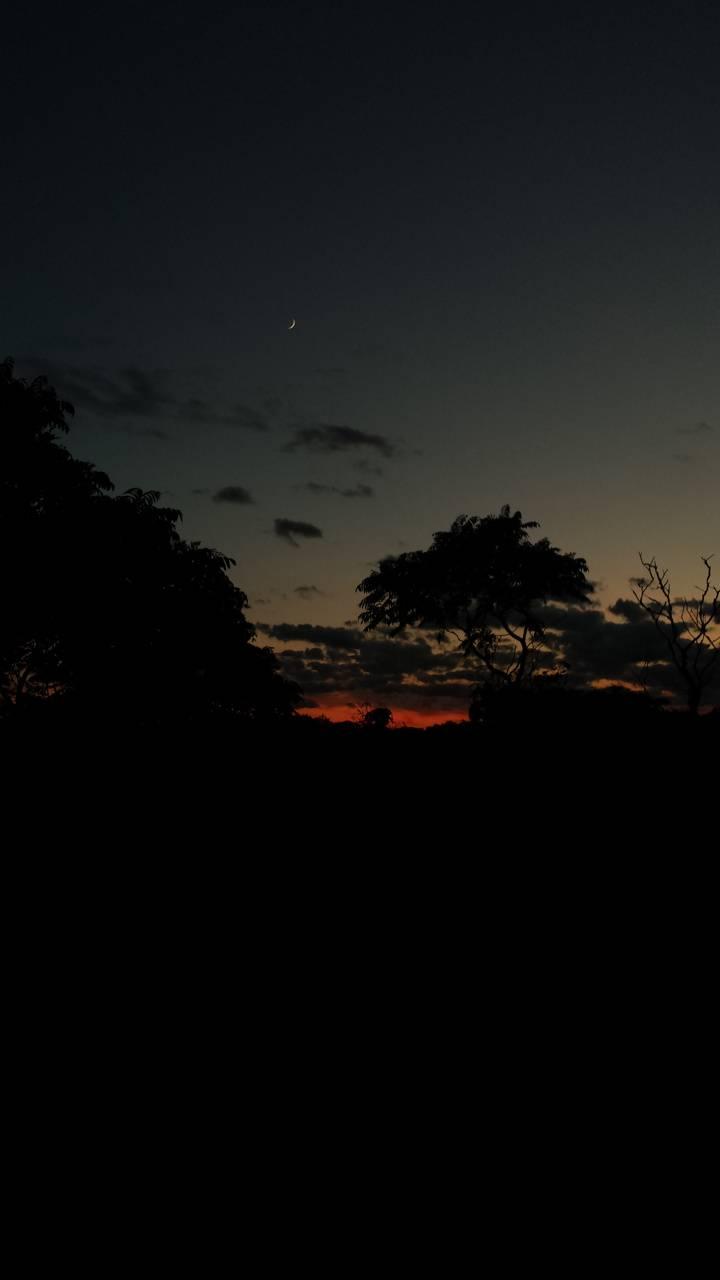Dark Sunset Wallpaper By Phyrefoxx Dd Free On Zedge