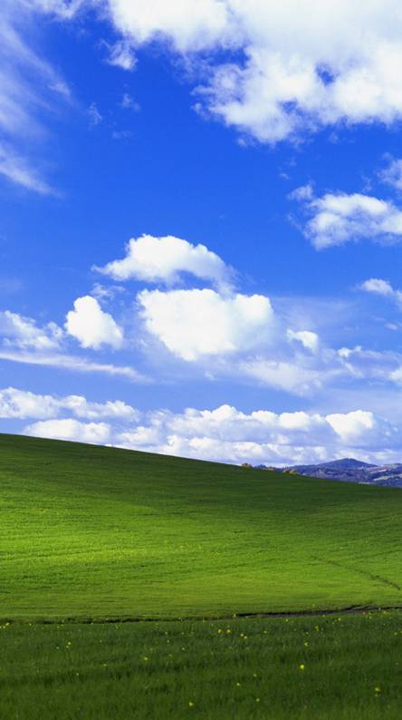 Windows Xp Wallpapers Free By Zedge