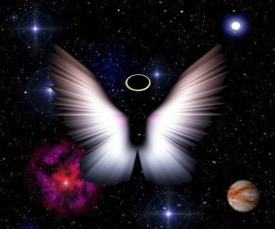 Angel Wings Halo 2