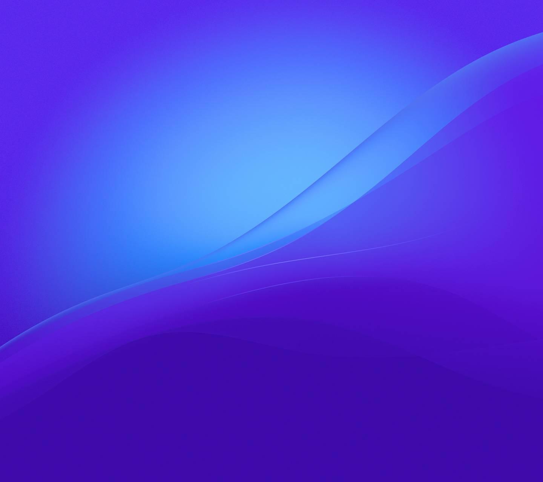 Z4 Blue n Purple S5