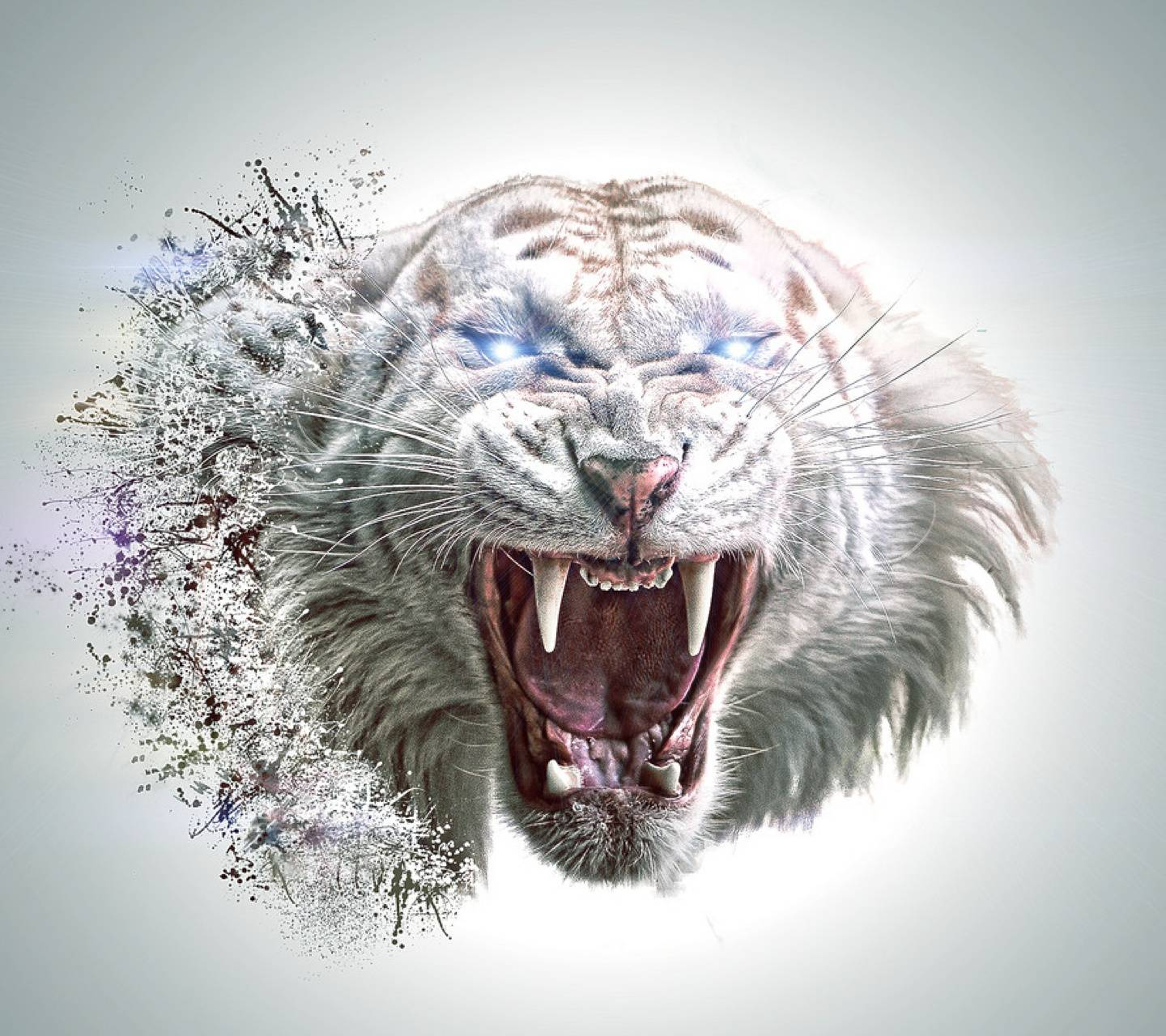 White Tiger Abstract