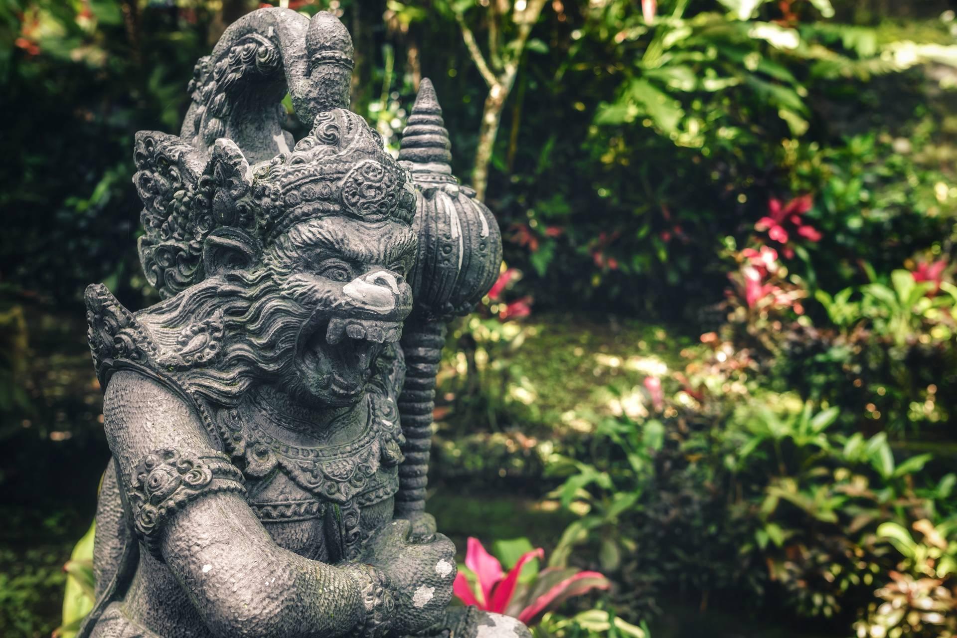Hanuman dns