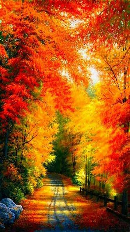 Autumn Landscape Wallpapers Free By Zedge