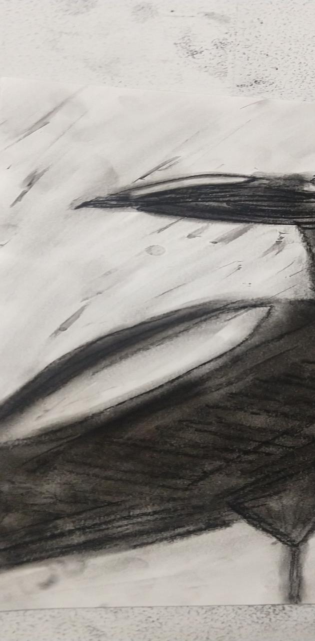 Charcoal Raven